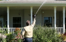 JanTech Pest Control - Spraying up high for flying and crawling pests.
